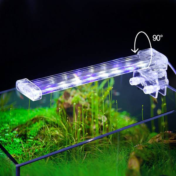 10 правил света и светильников для аквариума (светодиодные и люминесцентные).