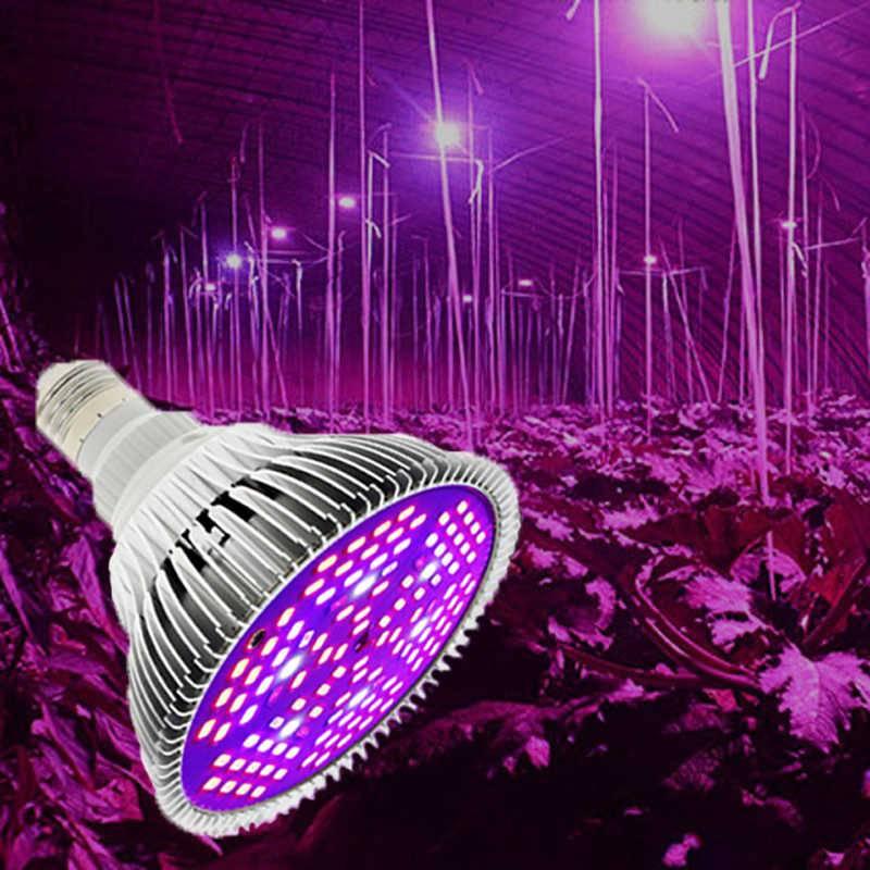 Как сделать светодиодную фитолампу для растений самостоятельно