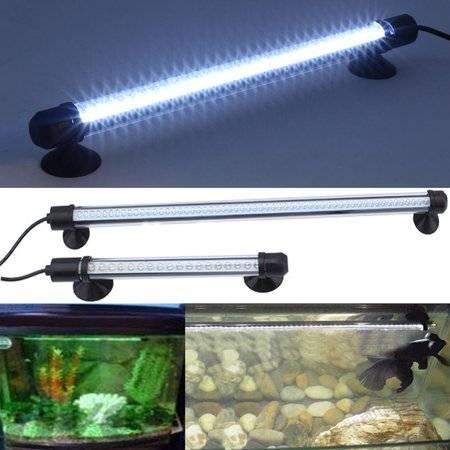 Уровень освещенности для различных водных растений в аквариуме, выбор ламп