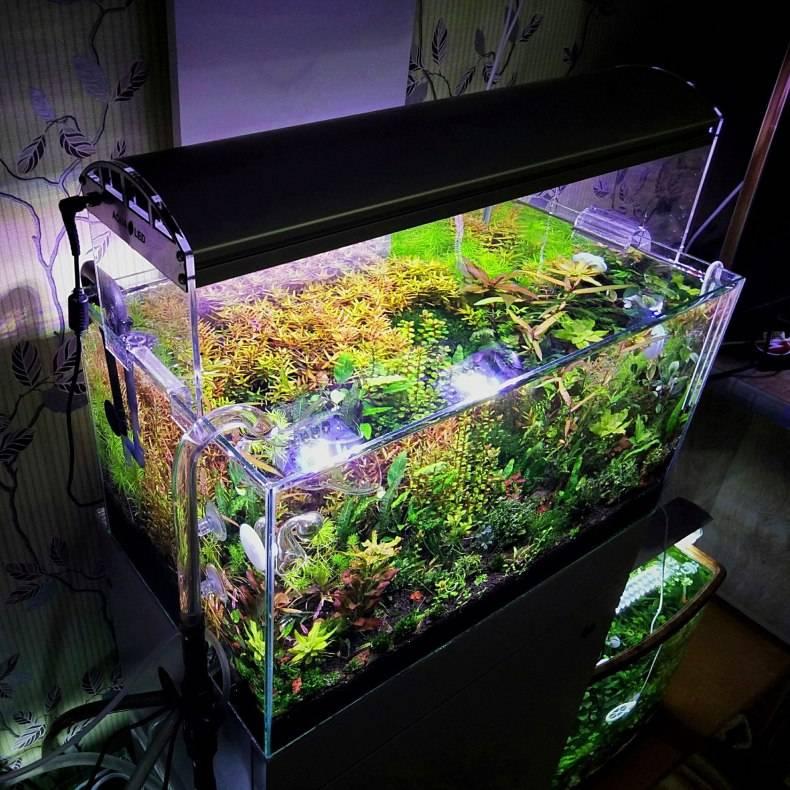 Как сделать подсветку аквариума светодиодной лентой