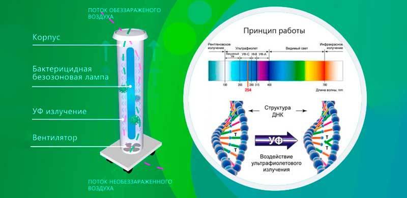 Лучшие кварцевые лампы: выбираем из рейтинга моделей от ichip | ichip.ru