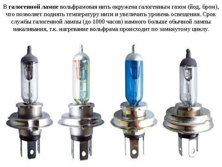 Лучшие галогеновые лампы для автомобиля на 2021 год