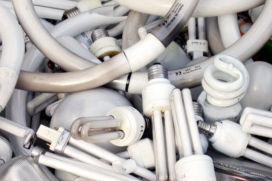 Куда сдать лампочки: энергосберегающие, галогеновые, светодиодные, люминесцентные, лампы накаливания на утилизацию, можно ли выкидывать в мусорку, причины особого обращения