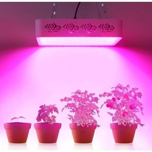 Как выбрать фитолампу: топ лучших, спектр, тип лампы для растений, мощность