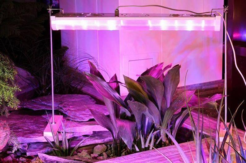 Топ-10 самых лучших фитоламп для рассады и растений