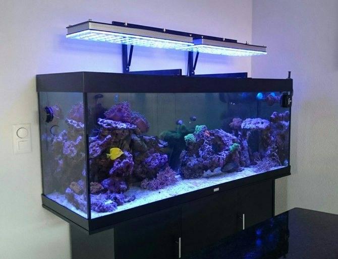 Светодиодная лента для аквариума с растениями какую выбрать