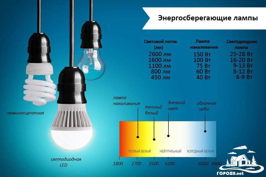 Какие лампы выбрать: светодиодные или энергосберегающие