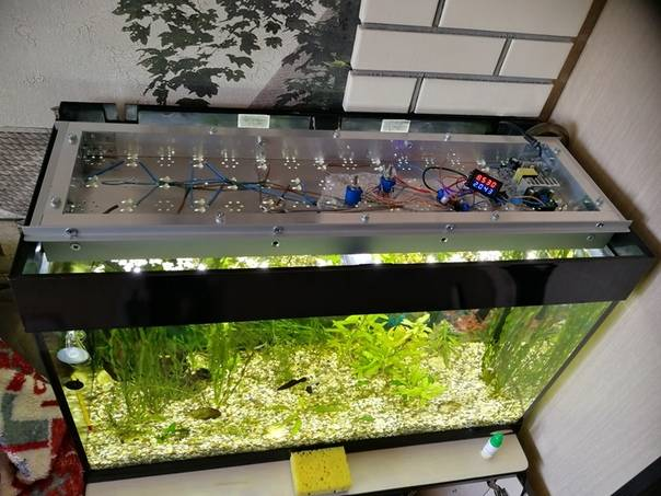 Подсветка для аквариума своими руками из светодиодной ленты