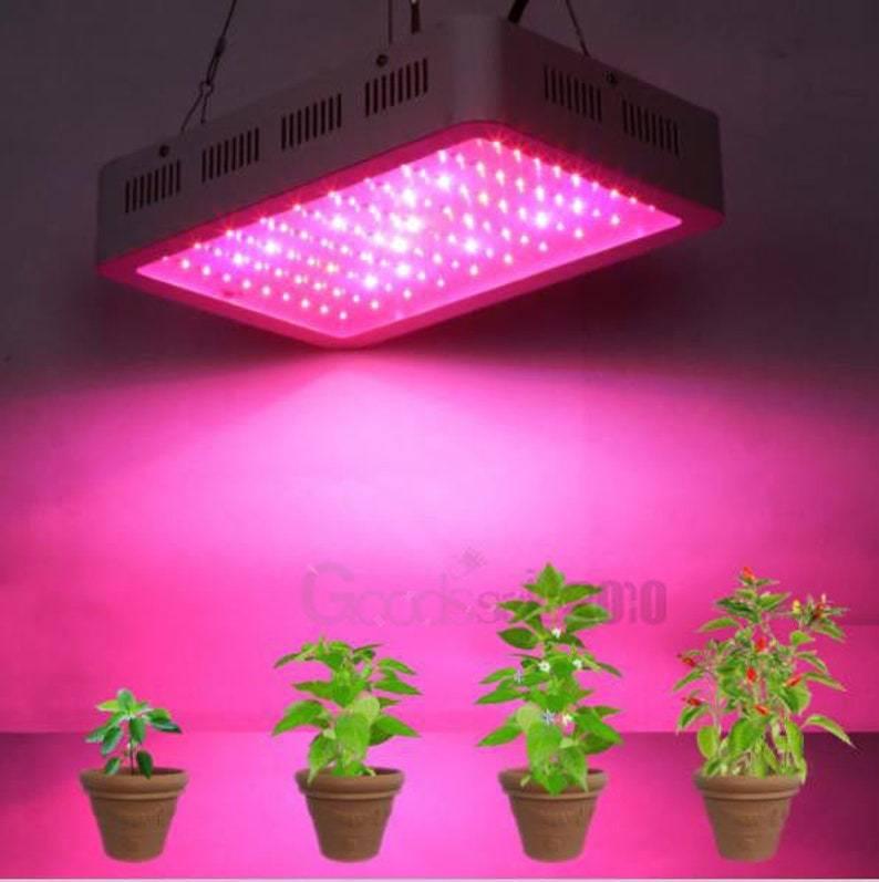 Фитолампа: что это такое, чем отличается от обычной светодиодной, как пользоваться