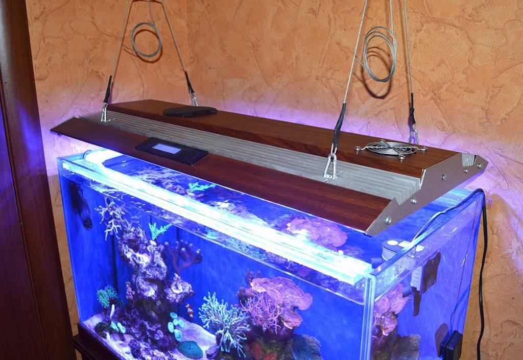 Светодиодная лента для аквариума: видео, фото, инструкция