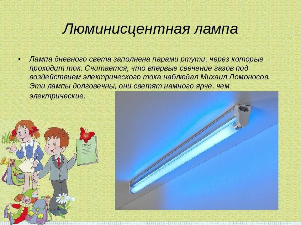 Ртутные, светодиодные и обычные: какие лампочки самые опасные