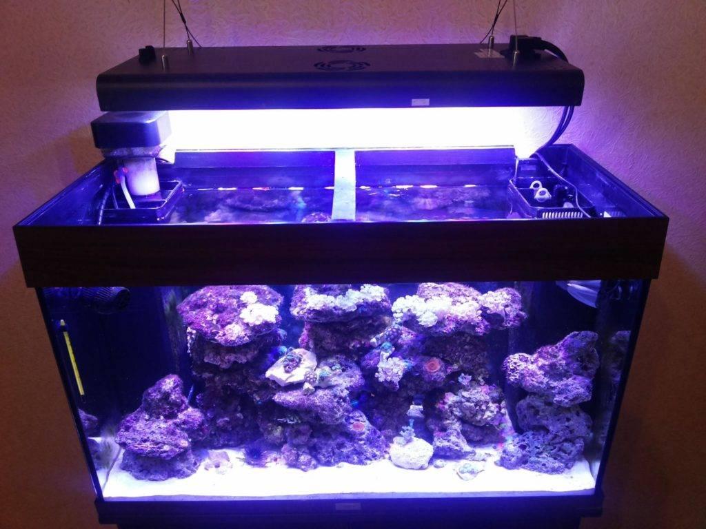 Светодиодное освещение аквариума своими руками