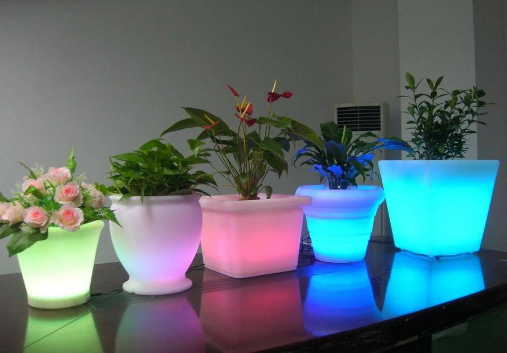 Как сделать фитолампу своими руками для растений в доме по требованиям науки — 3 способа