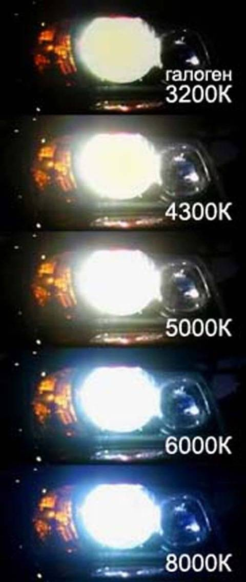 Какой ксенон лучше 4300 или 5000 в 2020 году - светит, линзы, птф, характеристики