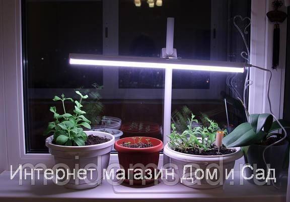Подсветка рассады в домашних условиях