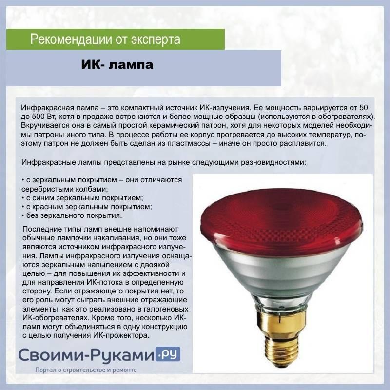 Инфракрасная лампа для обогрева курятника: можно ли использовать, как установить, отзывы