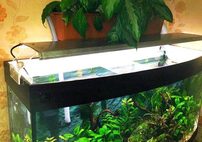 Светодиоды для аквариума, подсветка, как сделать своими руками