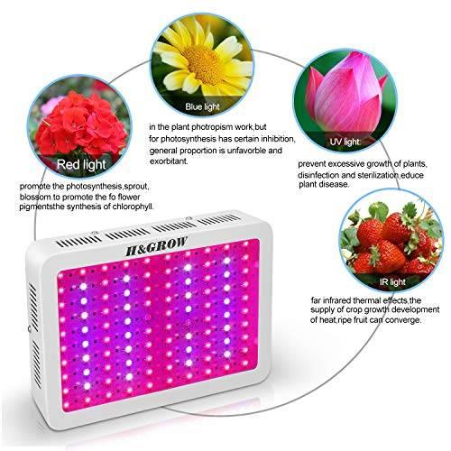 Делаем светодиодную подсветку растений: расчет мощности, выбор ленты, расчет питания