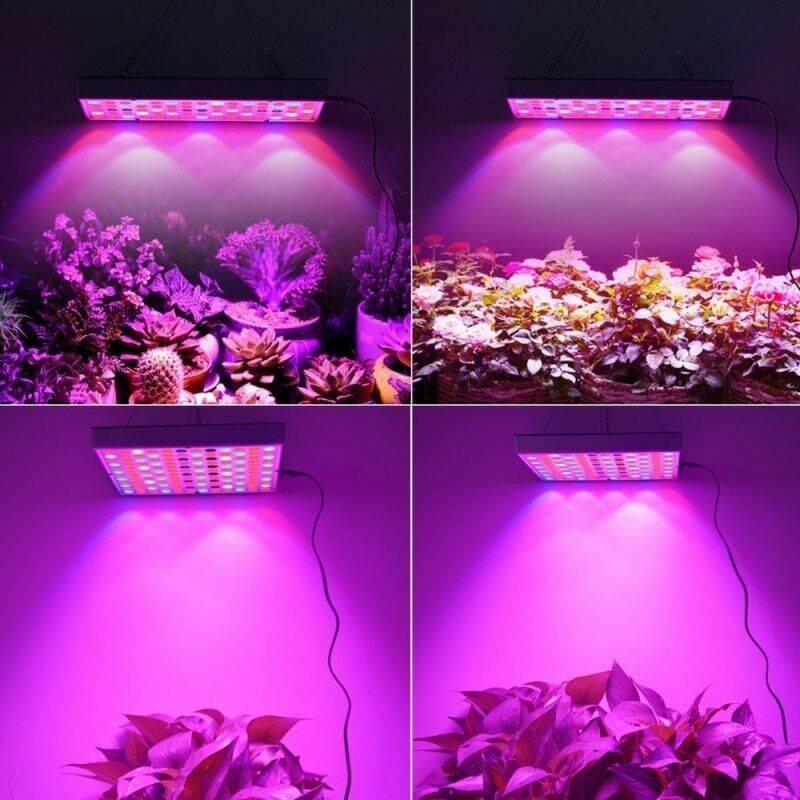 Светодиоды для растений - красные, синие или светодиоды полного спектра