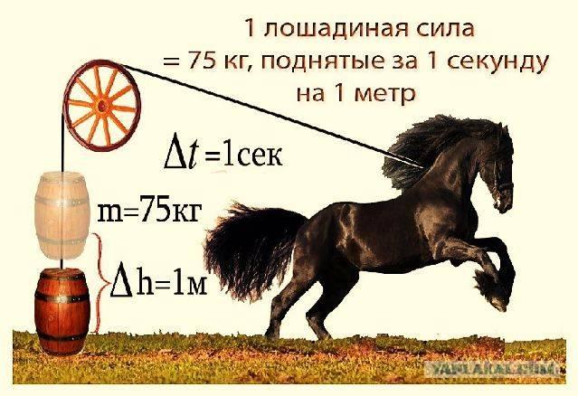Как правильно перевести киловатты в лошадиные силы