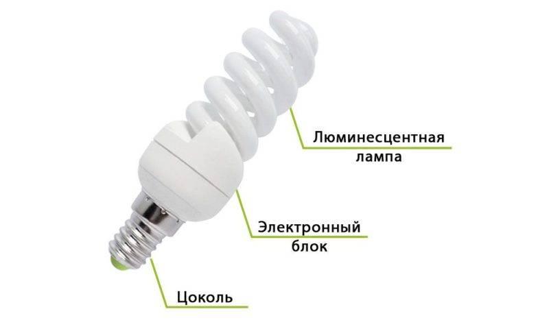 Энергосберегающие лампы: плюсы и минусы, виды и их характеристики
