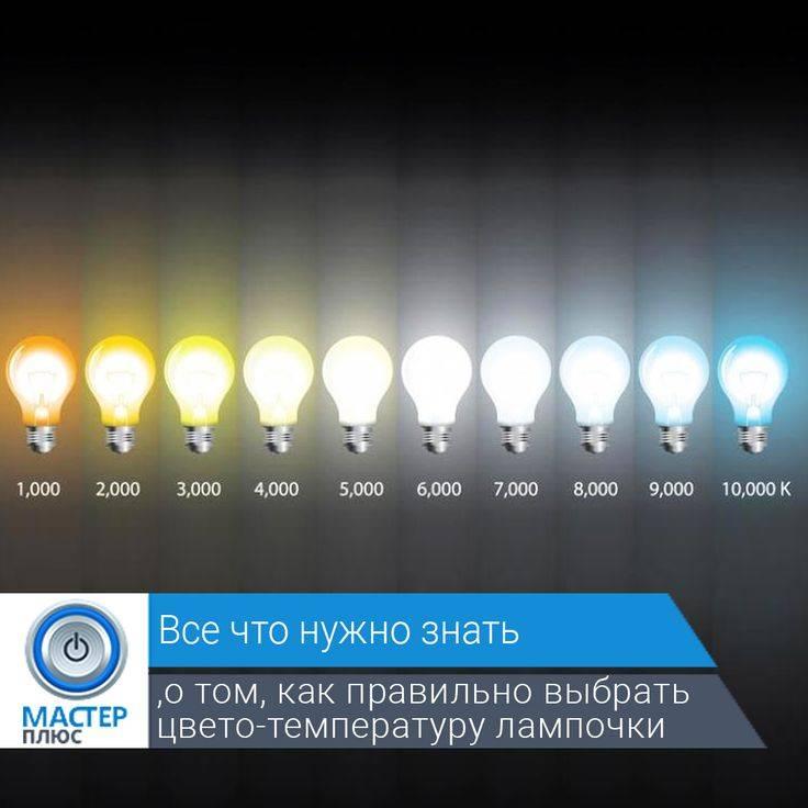 Теплый, дневной или холодный? – правила выбора света и советы по использованию в комнатах
