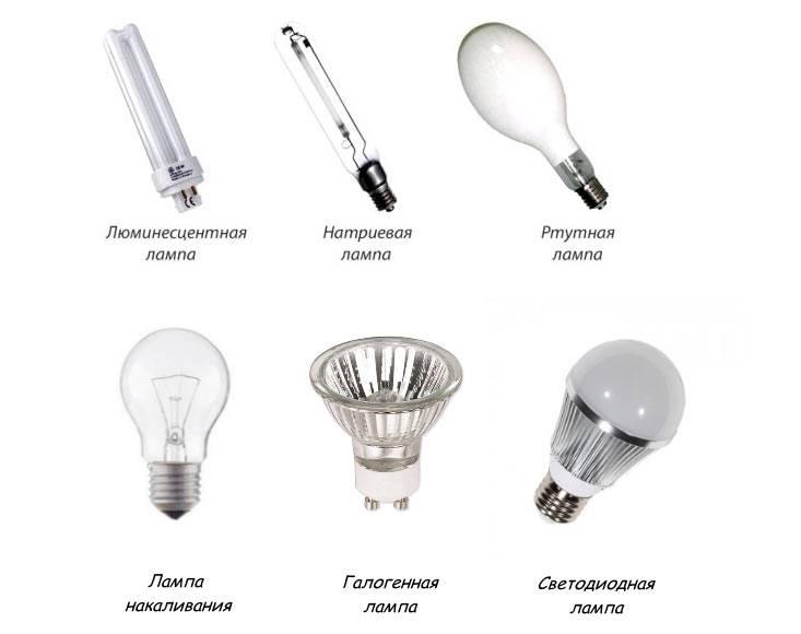 Выбираем лампы для дома: разбираемся с видами источников света, на какие характеристики стоит обращать внимание