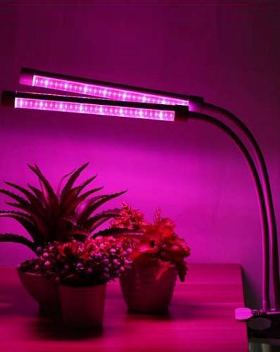 Как правильно выбрать фитолампу для досветки комнатных растений зимой и рассады весной?