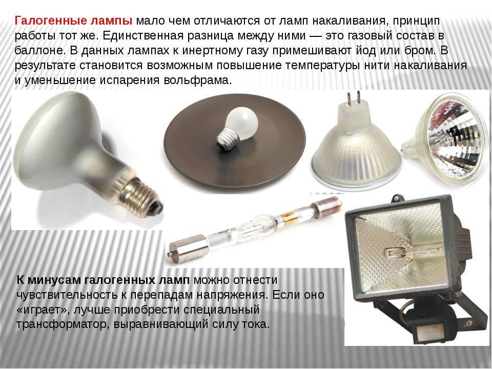 Галогеновые лампы для дома как правильно выбрать   советы и рекомендации от специалистов