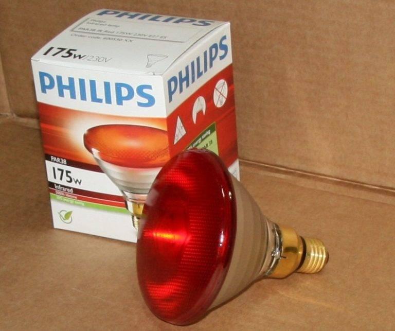 Инфракрасные лампы для освещения и обогрева курятника