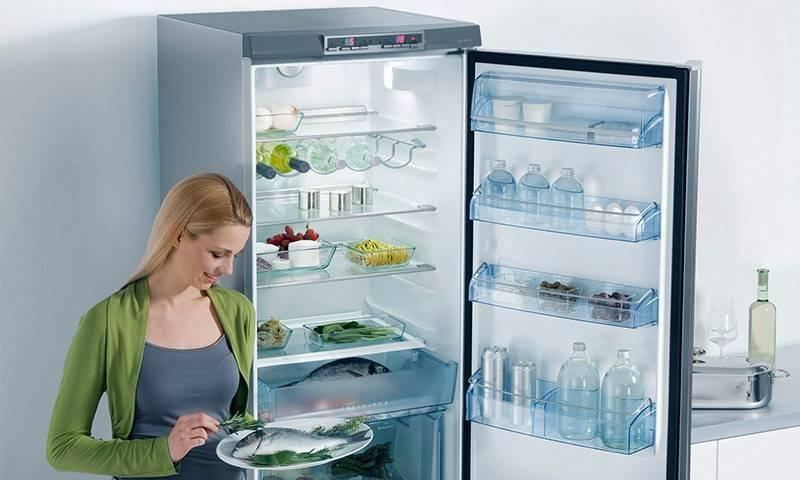 Рейтинг фирм холодильников – как не ошибиться с выбором