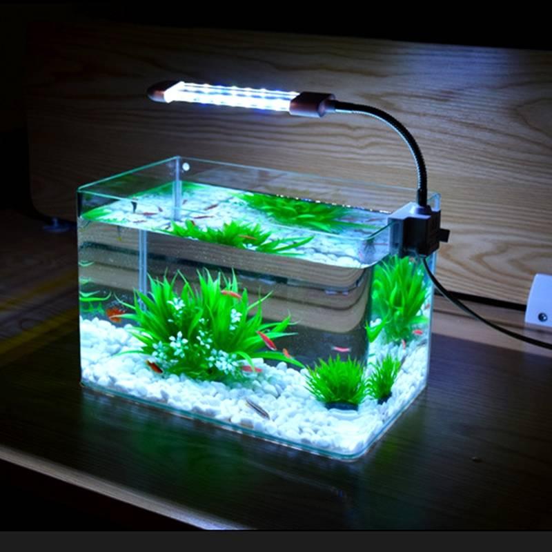 Светодиодная лента для аквариума: какую выбрать, оптимальное для рыб и растений