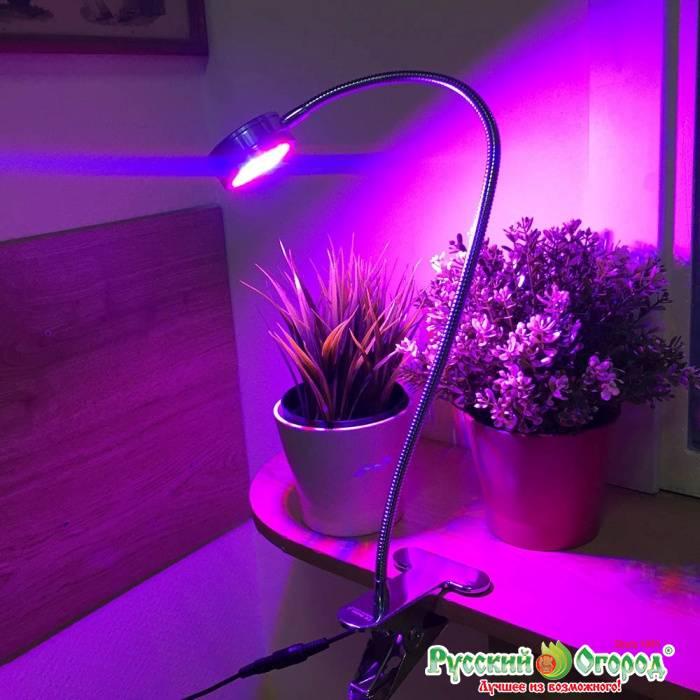 Светодиодная подсветка для растений и цветов своими руками