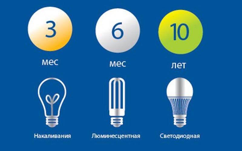 10 правил как выбрать светодиодную лампу для дома и квартиры. проверка качества, пульсаций