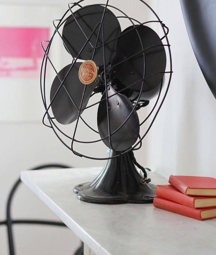 Пошла жара: понятный гид по выбору вентилятора — ferra.ru