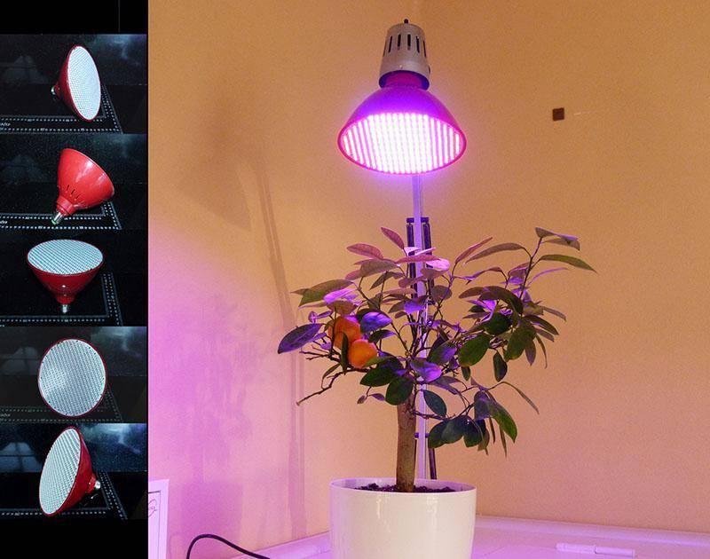 Какие фитолампы для растений лучше использовать? | комнатные цветы и уход за ними