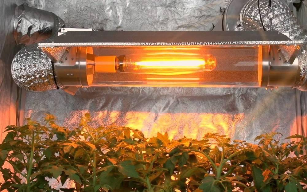 Расчет освещения для теплиц, выбор ламп