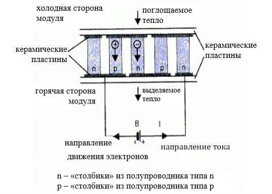 Что можно сделать из элементов пельтье и за счет каких механизмов?