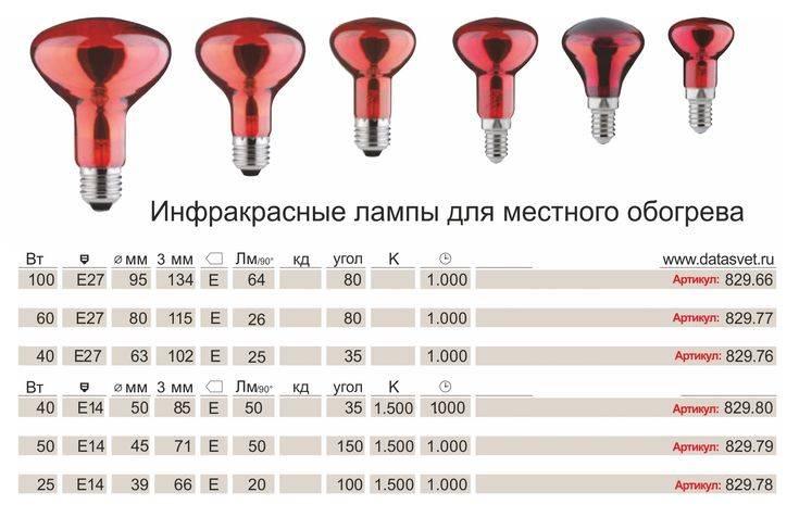 Лампа для обогрева цыплят: какая лучше для брудера, технические характеристики