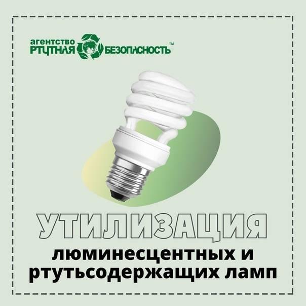 Утилизация светодиодных ламп: нужно ли утилизировать