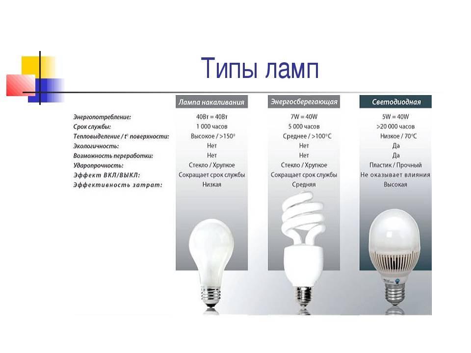 Какие бывают виды электрических лампочек? все виды с описанием и фото