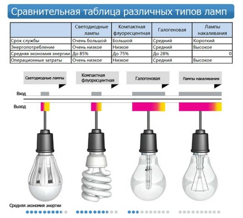 Какие виды лампочек существуют: обзор основных типов ламп + правила выбора лучшей