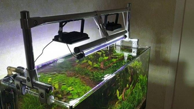 Освещение аквариума светодиодными прожекторами: как подобрать, рассчитать, закрепить и сделать самому светильник для аквариума и травника > свет и светильники