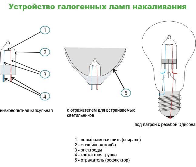 Галогеновая лампа: разновидности, плюсы и минусы, особенности замены на светодиодные