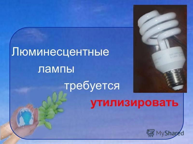 Утилизация энергосберегающих ламп: куда выбрасывать или сдать, прием ртутных ламп