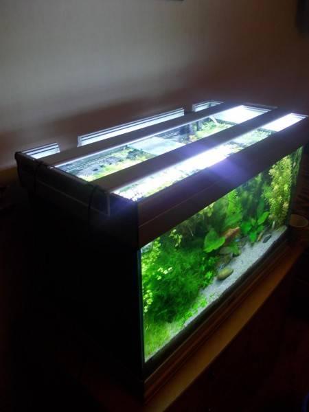 Как организовать светодиодную подсветку аквариума