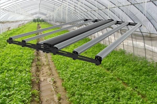 Фитолампы для теплиц: какие выбрать лампы для растений в теплицу и сделать свет 12 вольт, освещение зимних теплиц для выращивания растений - отзывы видео, рассчитать мощность